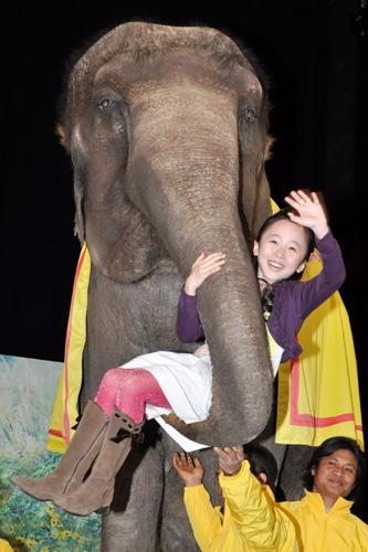 『人気子役の本田望結、ゾウに抱っこされ「お父さんに抱っこされてるみたい」と大喜び!』