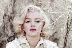 『マリリン・モンローの知られざる素顔に迫るドキュメンタリーを公開』