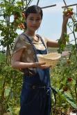 『橋本愛が農業の苦労を体験し「もう私にはできない」と嘆きつつも人間的成長は実感』