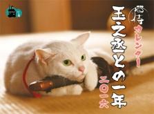『干支は未(ひつじ)から申(さる)に変われど、猫動画の人気は変わらず!』