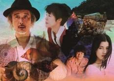 『リリー・フランキーや寺島しのぶの存在感にため息『シェル・コレクター』の映像美と音の世界』