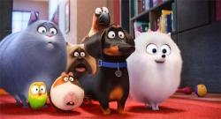 『映画『ペット』が公開25日目で動員300万人、興収35億円突破!』