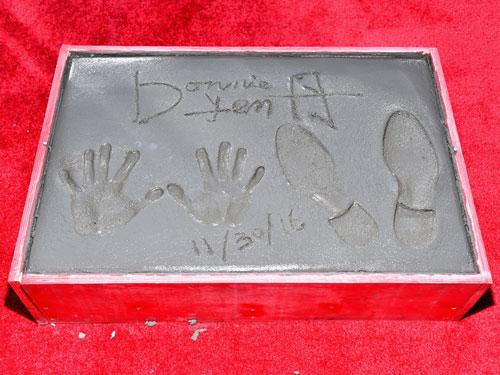 『ドニー・イェン、チャイニーズ・シアターに手形刻み「今年は最高の年」』