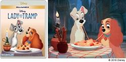 『ウォルト・ディズニーが語る愛犬秘話!『わんわん物語』ボーナス映像解禁』