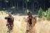 『マーゴット・ロビー主演!核汚染免れた谷で1女2男が繰り広げるSFサスペンス『死の谷間』』