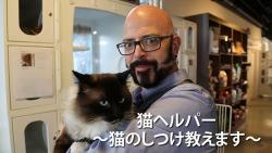 『困ったときに必要なのは猫の手よりもジャクソンの手!? 猫好き必見の番組はコレ!』