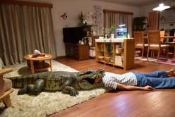 『榮倉奈々、自らワニに頭突っ込む!『妻ふり』体を張ったメイキング映像』