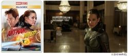『『アントマン&ワスプ』より女性ヒーローの魅力に迫る2本の映像解禁』