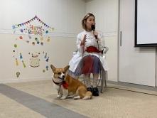 『IMALU、愛犬コーギーは「家族以上の存在」』