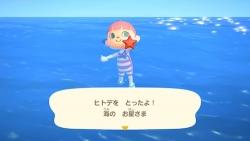 『「あつ森」の綺麗な海で泳げるように! 7月3日に無料アップデート』